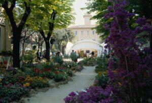 Cattolica-in-fiore